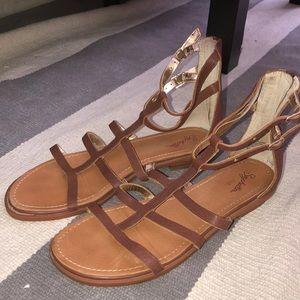Seychelles Gladiator Sandals!